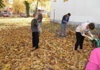 Őszi udvartakarítás